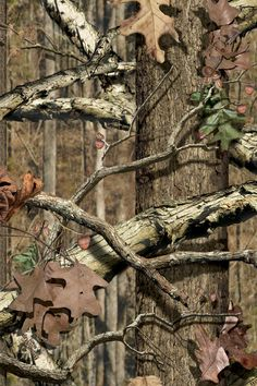 Mossy Oak Breakup Camo Wallpaper Realtree Wallpaper | I...