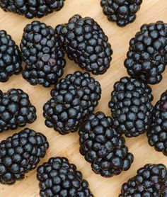 Browse a wide selection of fruit & berry seeds and plants for your home garden at Burpee. Grow robust blueberry, strawberry, raspberry and blackberry plants with high-quality fruit and berry seeds available from Burpee today. Fruit Plants, Fruit Garden, Fruit Bushes, Garden Seeds, Blackberry Plants, Raspberry, Strawberry, Chicken Garden, Planting Shrubs