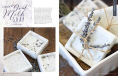 Willow and Sage Winter 2015 - Stampington