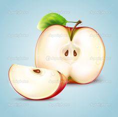 Apple illustration — Stock Vector © silvertiger #11248632