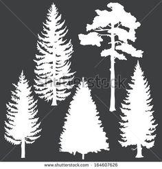 White Pine Cone Drawing Clip Art Pine Cone Clipart Panda