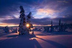 Winter Morning by Jorn Allan  Pedersen on 500px
