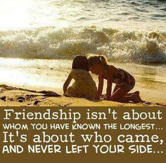 best the value of friendship images friendship quotes