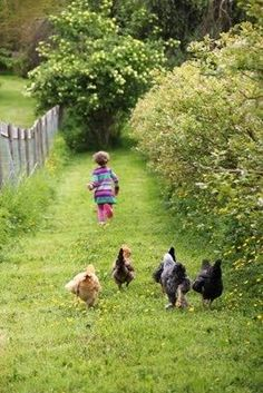 Some old-fashioned things like FRESH AIR AND SUNSHINE are hard to beat. Laura Ingalls.