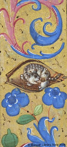 Beaver biting its genitals   Book of Hours   France   ca. 1480   The Morgan Library & Museum