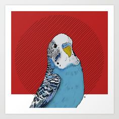 ☆★☆parakeet Budgie Parakeet, Budgies, Diy Accessories, Funny Cute, Cute Pictures, Feather, Art Prints, Illustration, Character