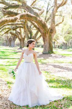 Wedding gown by Alvina Valenta / Style 9551 / Dramatic Ballgown Bridal Portraits Boone Hall 0009 by Charleston wedding photographer Dana Cubbage