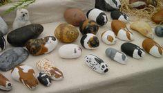 Nog een foto van allemaal kiezelstenen. Probeer het maar eens... niet zomaar voor elkaar :)