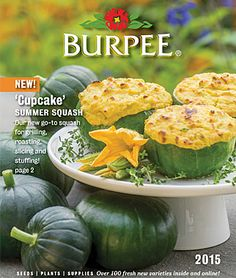 60 Free Seed Catalogs and Plant Catalogs For Your Garden Garden Catalogs, Plant Catalogs, Free Catalogs, Burpee Seeds, Gardening Zones, Gardening Blogs, Planting, Japan Garden, Filling Food