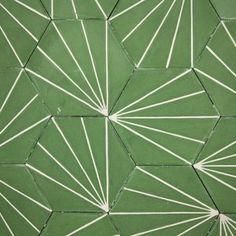 Dandelion - lawn/milk - Sortiment
