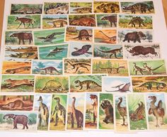 Lot of 40 Dinosaur Tea Cards Vintage Brooke Bond for scrapbooking collage altered art crafts by scrapitsideways, $6.00 Art Crafts, Arts And Crafts, Prehistoric Animals, Bond, Collage, Scrapbooking, Memories, Tea, Scrapbook