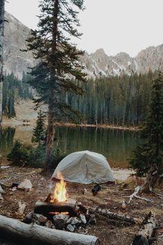 Cant wait to take my lovies camping and wake up to this!