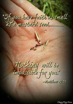 Have Faith! Scripture Quotes, Encouragement Quotes, Bible Scriptures, Faith Quotes, Christian Faith, Christian Quotes, Gods Promises, God First, Faith In God