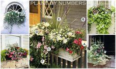 Ten DIY Window Box Planter Ideas with Free Building Plans - Tuesday {ten} - bystephanielynn