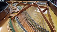 Bosendorfer strings