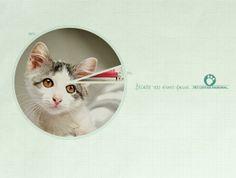 Pet Center Marginal: Circle