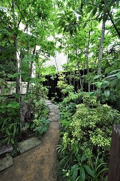 雑木の庭つくり日記@高田造園設計事務所 Garden Pond Design, Garden Pool, Shade Garden, Garden Paths, Landscape Plans, Landscape Design, Narrow Garden, Diy Terrasse, Garden Images