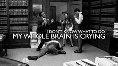 """""""I don't know what to do. My Whole Brain is Crying"""""""