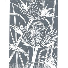 One of our new series of flower seed heads. Hand cut and hand press printed, available in ink gray. Titled and signed in pencil by the artist. This print is also available printed in ink from Linocut Prints, Art Prints, Block Prints, Lino Art, Linoprint, Handprint Art, Art Graphique, Crayon, Illustrations