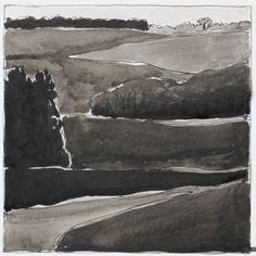 Rabley, woods and fields 2  by Martyn Brewster