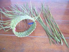 P1210369 Flax Weaving, Flax Flowers, Card Weaving, Weave, Herbs, Tahiti, Pattern, Fiber, Linen Fabric