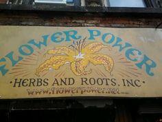 Flower Power in New York, NY