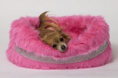 Blinky Band Pink Bed by Lola Santoro Pet Accessories
