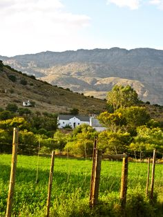 Lost in wine country outside of Oudsthoorn, South Africa. Wine Country, Country Life, Country Roads, Beautiful Places To Visit, Cape Town, Lodges, Old Houses, Farms, South Africa