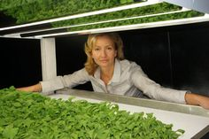 Proof You Can Grow Indoors!  >>  FarmedHere: The Nation's Largest Indoor Organic Farm Now Growing in #Chicago
