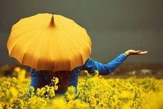 Umbrella Photography, Horse Girl Photography, Urban Photography, Color Photography, Yellow Daisies, Minimalist Photography, Magnum Photos, Travel Design, Character Aesthetic
