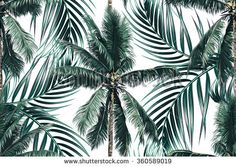 Tropical palm leaves, trees seamless vector floral pattern background