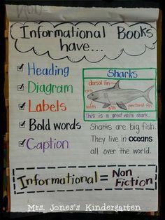 non fiction anchor chart