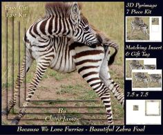 Because We Love Furries - Beautiful Zebra Foal + Tag + by Claire James 7 piece easy cut, fast kit design with very effective 3D pyrimage/pyramid. This design comes with matching insert & tag.  I hope you enjoy crafting with my products.