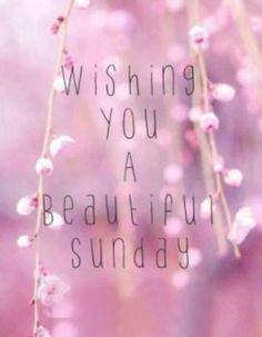 Be beautiful. #tammysbeautifulbutterflies #nuskin #bebeautiful