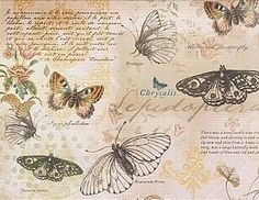 vintage background collages with ephemera and butterflies