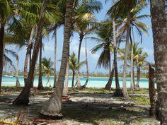 las islas , hay 365 islas y solo pocas habitadas por indígenas, los Kunas .