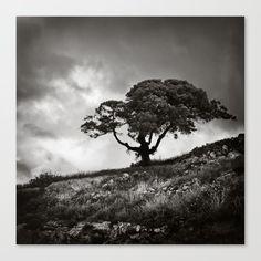 Tree and cloudy sky Canvas Print by kostaspavlis Fine Art Prints, Canvas Prints, Sky, Black And White, Artist, Heaven, Photo Canvas Prints, Black N White, Art Prints