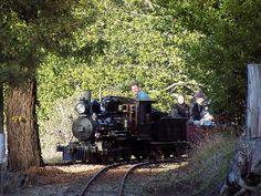 Redwood Valley Railway - Tilden Park - $2