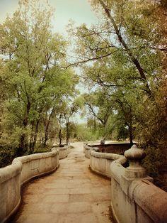Senda botánica Casa de Campo Madrid- Botanic path in La Casa de Campo parc (Madrid - Spain)