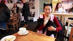 Cafe Miou in Copenhagen is a small good place where you can sit and watch the cats walking around your table. I find it to relax me. Their coffee and cakes are good too. Fika, Copenhagen, Good Things, Places, Relax, Walking, Coffee, Watch, Kaffee