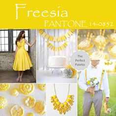 Freesia Palette http://www.theperfectpalette.com/2013/11/top-10-pantone-colors-for-spring-2014.html