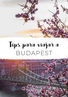 consejos para viajar a budapest_pin2 Travel Around The World, Around The Worlds, Christmas In Europe, Magic City, Best Resorts, Bratislava, Eurotrip, Eastern Europe, Plan Your Trip