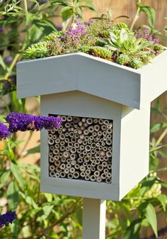 Bee more attractive: How to entice pollinators into your garden - bee and bug hotel with a nice roof of succulents