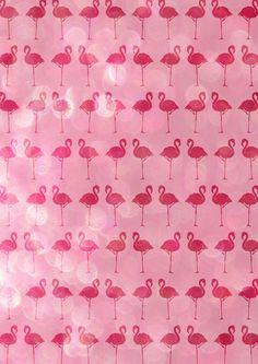 Flamingo V.2 Art Print
