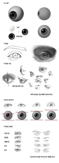 눈 - 자료즈