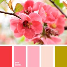 Pinks and reds color scheme if Jack wears his Mountie uniform #Hearties #HallmarkChannel #WhenCallstheHeart