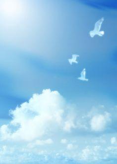 View album on Yandex. Views Album, Jesus Christ, Birds, Clouds, Wallpaper, Nature, Outdoor, Adobe, Bird
