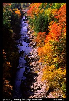 Quechee Gorge, Vermont.  We briefly visited this on our honeymoon.  I can't wait to return to VT!