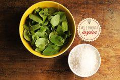 Mel e Pimenta: Como conservar manjericão