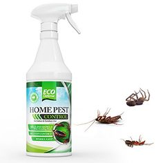 All Natural Organic Home Pest Roach By Eco Defense This